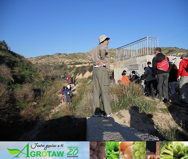 Ruta de senderismo y visita guiada por los arqueólogos al Yacimiento Argárico de la Bastida - 9