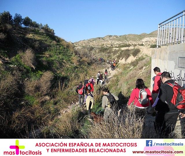 Ruta de senderismo y visita guiada por los arqueólogos al Yacimiento Argárico de la Bastida - 12