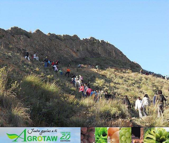 Ruta de senderismo y visita guiada por los arqueólogos al Yacimiento Argárico de la Bastida - 26