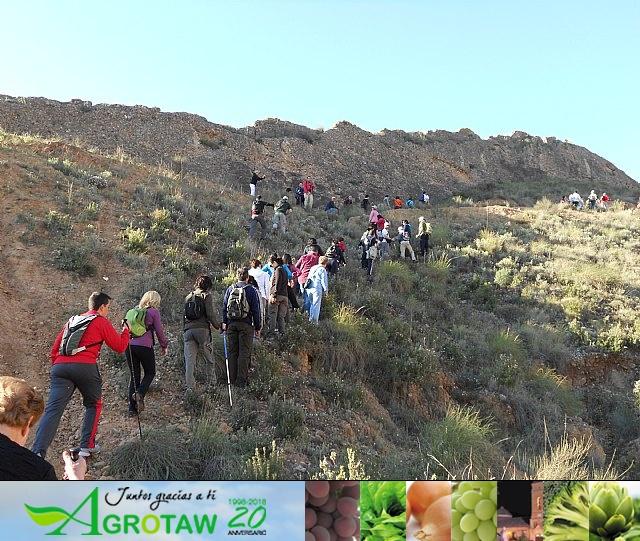 Ruta de senderismo y visita guiada por los arqueólogos al Yacimiento Argárico de la Bastida - 27