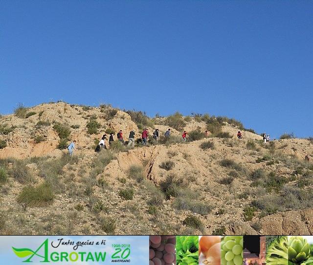 Ruta de senderismo y visita guiada por los arqueólogos al Yacimiento Argárico de la Bastida - 31