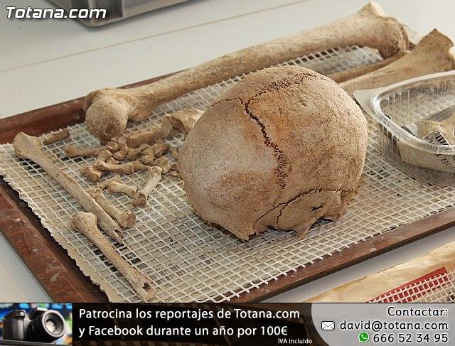 Yacimiento Argárico de La Bastida - 13
