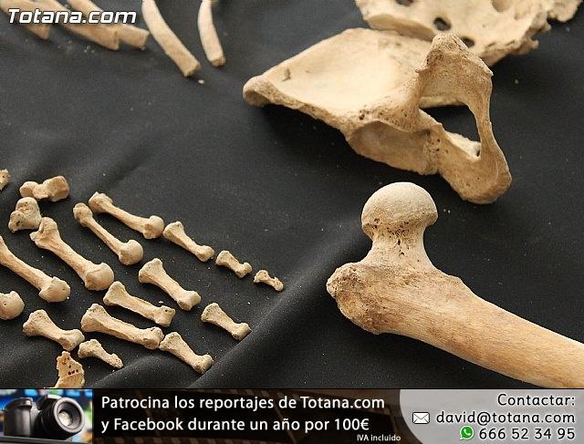 Yacimiento Argárico de La Bastida - 15