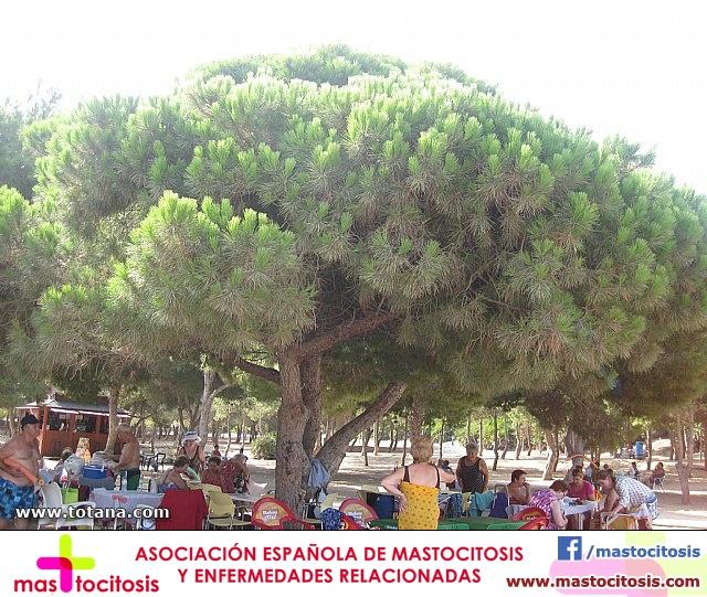 Cala del Pino. La Manga del Mar Menor. 2013 - 28