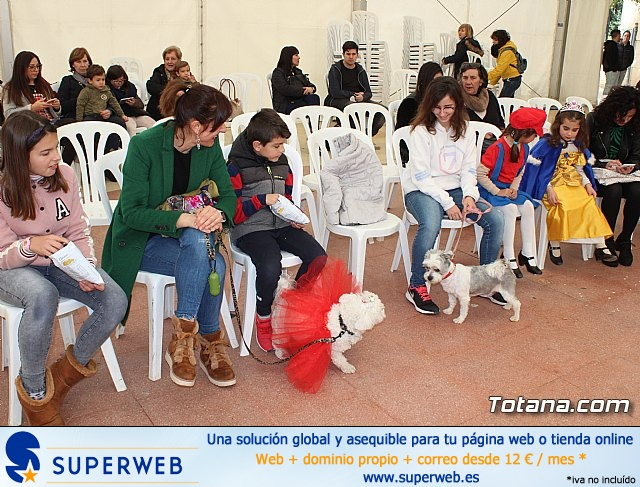 Concurso de disfraces de mascotas Carnaval de Totana - 3