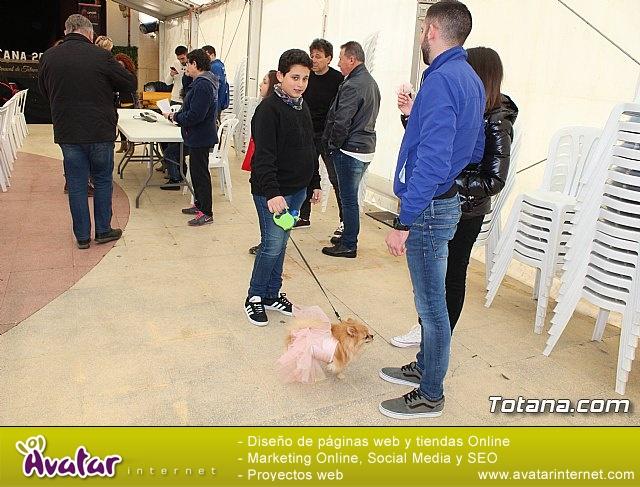 Concurso de disfraces de mascotas Carnaval de Totana - 6