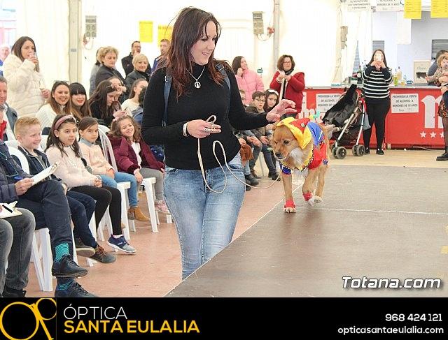 Concurso de disfraces de mascotas Carnaval de Totana - 20