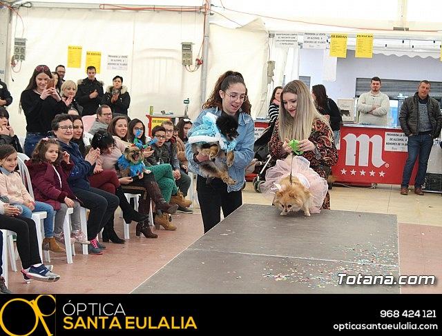 Concurso de disfraces de mascotas Carnaval de Totana - 32