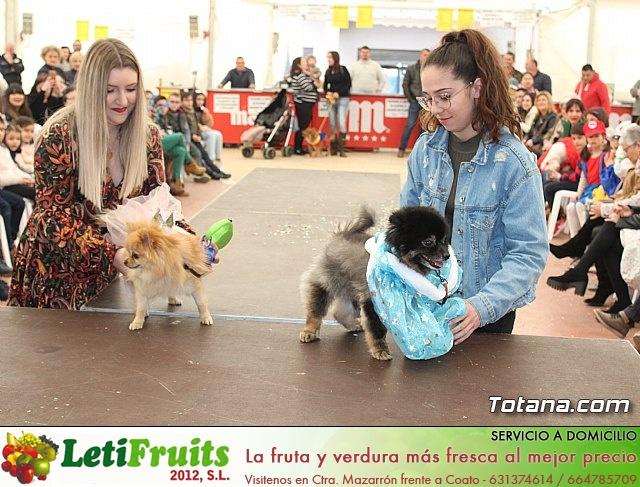 Concurso de disfraces de mascotas Carnaval de Totana - 35