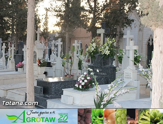 Cementerio. Días previos a Todos los Santos - 34