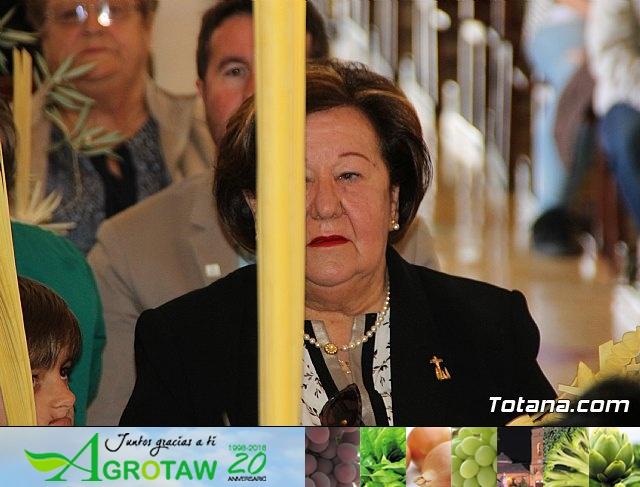 Procesión Domingo de Ramos 2018 (San Roque, Parroquia de las Tres Avemarías) - 24