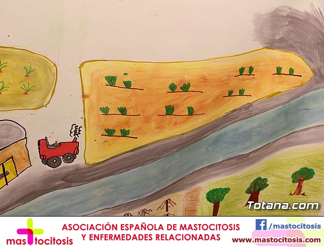 Exposición murales 40 aniversario Comunidad de Regantes Totana - 59