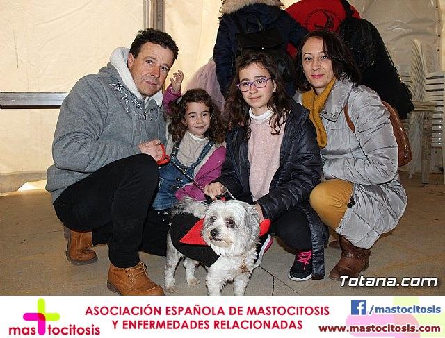 Concurso de disfraces de mascotas - Carnaval de Totana 2017 - 1