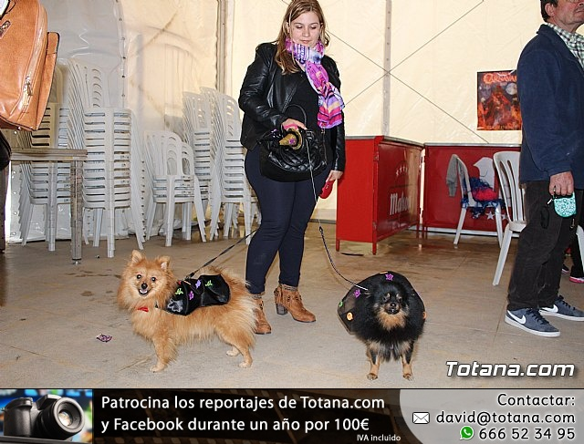 Concurso de disfraces de mascotas - Carnaval de Totana 2017 - 3