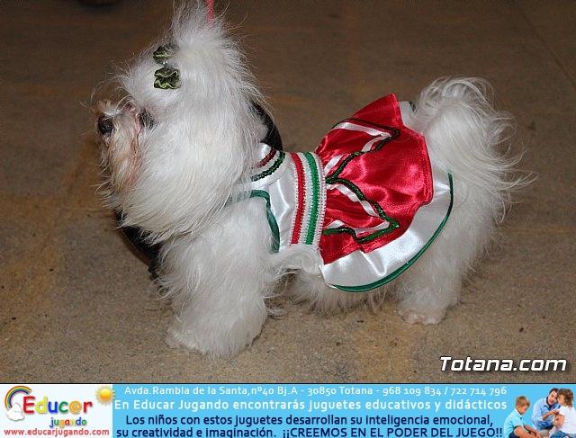 Concurso de disfraces de mascotas - Carnaval de Totana 2017 - 7
