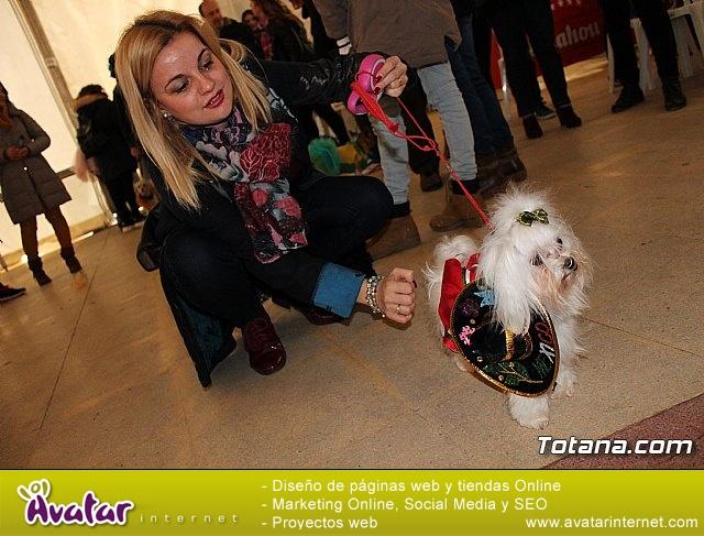 Concurso de disfraces de mascotas - Carnaval de Totana 2017 - 9