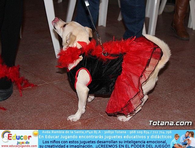 Concurso de disfraces de mascotas - Carnaval de Totana 2017 - 12