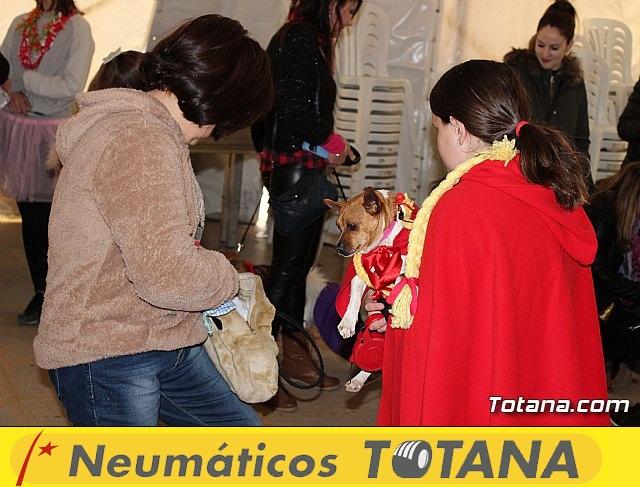 Concurso de disfraces de mascotas - Carnaval de Totana 2017 - 16