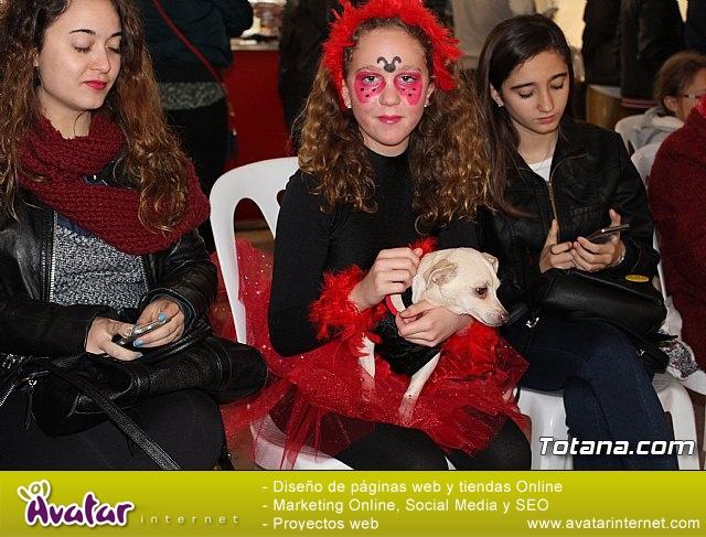 Concurso de disfraces de mascotas - Carnaval de Totana 2017 - 22