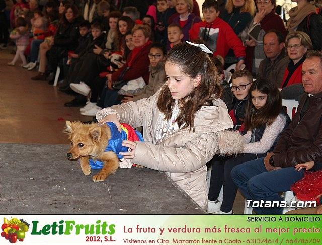 Concurso de disfraces de mascotas - Carnaval de Totana 2017 - 108