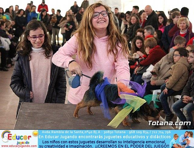 Concurso de disfraces de mascotas - Carnaval de Totana 2017 - 110