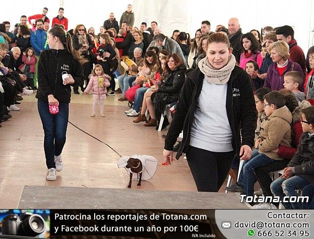Concurso de disfraces de mascotas - Carnaval de Totana 2017 - 117