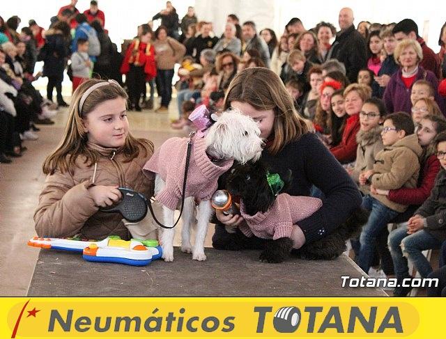 Concurso de disfraces de mascotas - Carnaval de Totana 2017 - 122