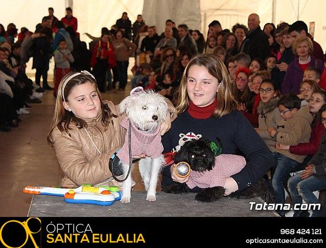 Concurso de disfraces de mascotas - Carnaval de Totana 2017 - 123