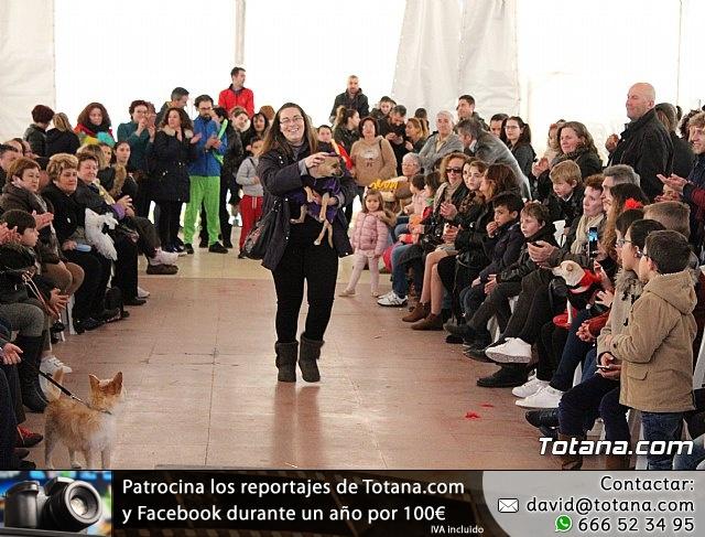 Concurso de disfraces de mascotas - Carnaval de Totana 2017 - 124