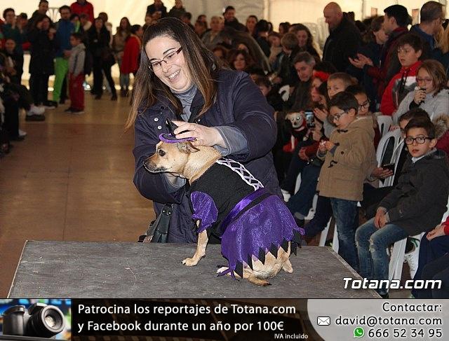 Concurso de disfraces de mascotas - Carnaval de Totana 2017 - 126