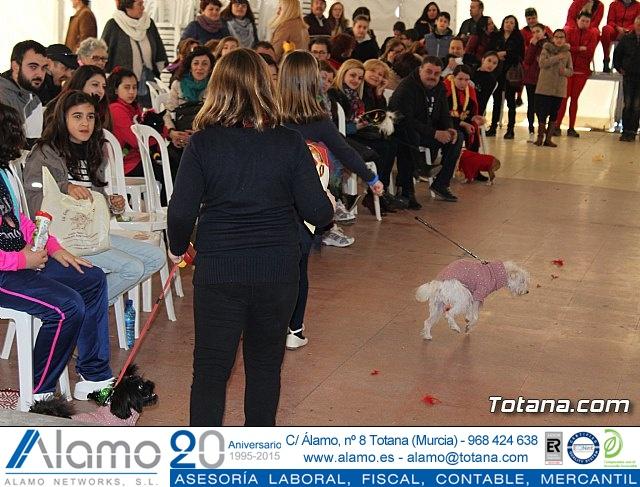 Concurso de disfraces de mascotas - Carnaval de Totana 2017 - 133