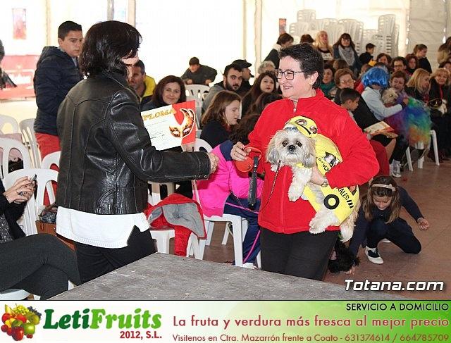 Concurso de disfraces de mascotas - Carnaval de Totana 2017 - 135