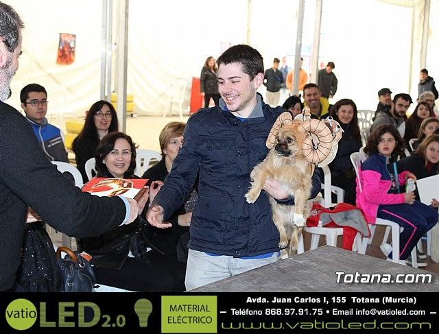 Concurso de disfraces de mascotas - Carnaval de Totana 2017 - 139