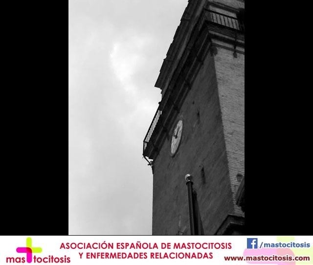 IV Concurso de Fotografía Digital TOTANA.COM  - 8