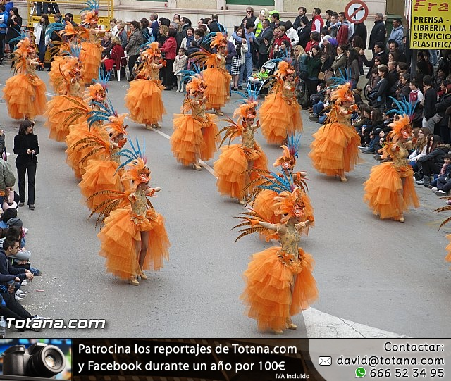 Carnavales de Totana 2014 - 1