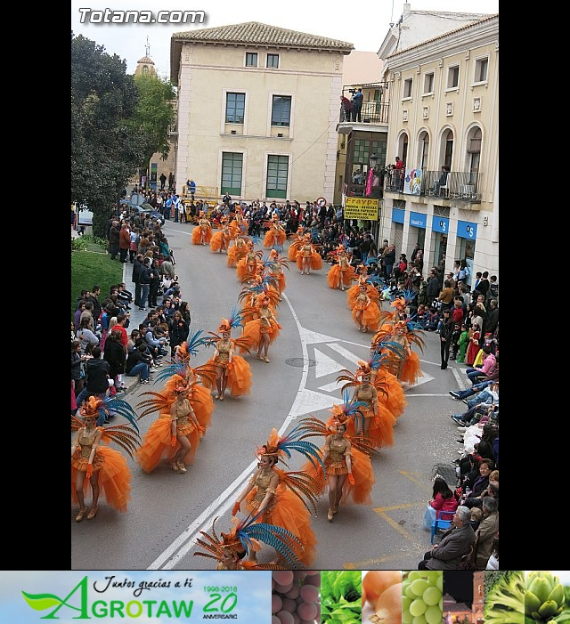 Carnavales de Totana 2014 - 10