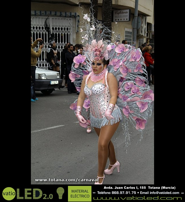 Desfile de Carnaval. Totana 2014 - 29