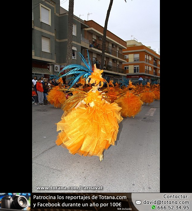 Desfile de Carnaval. Totana 2014 - 36
