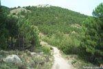 Foto Sierra Espuña 1