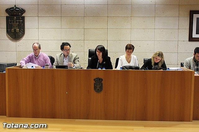 Pleno ordinario Diciembre 2012 - 5