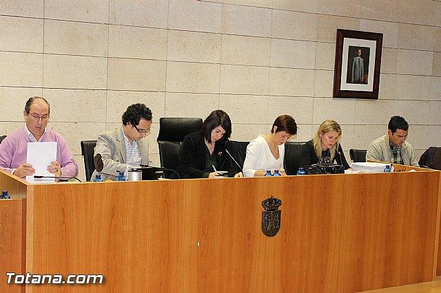 Pleno ordinario Diciembre 2012 - 9