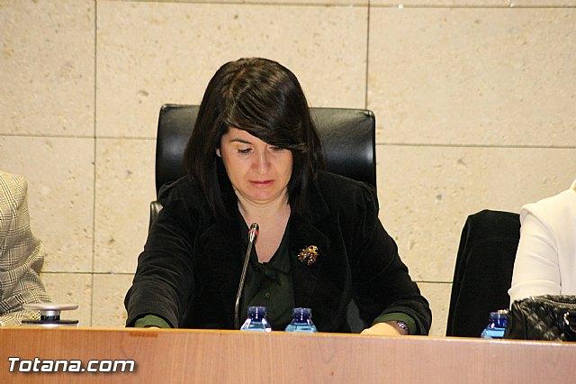 Pleno ordinario Diciembre 2012 - 15