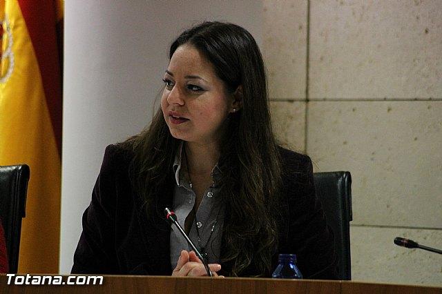 Pleno ordinario Diciembre 2012 - 19