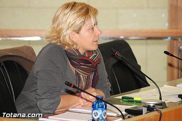 Pleno ordinario Diciembre 2012 - 20
