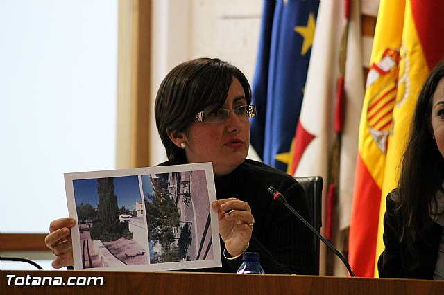 Pleno ordinario Diciembre 2012 - 27