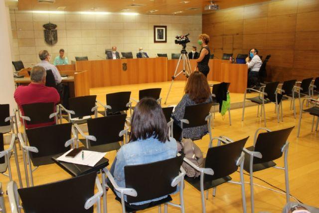 Pleno ordinario mayo 2020 - 1