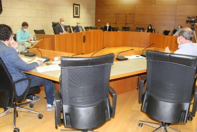 Pleno ordinario mayo 2020 - 3