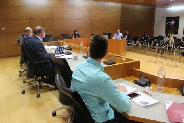 Pleno ordinario mayo 2020 - 5
