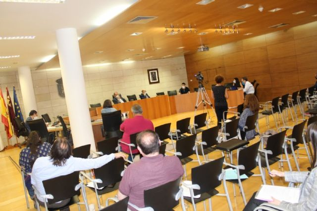 Pleno ordinario mayo 2020 - 13