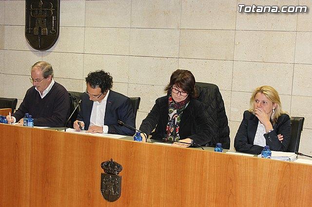 Pleno ordinario noviembre 2013 - 4